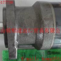 MGLR100A25液压马达